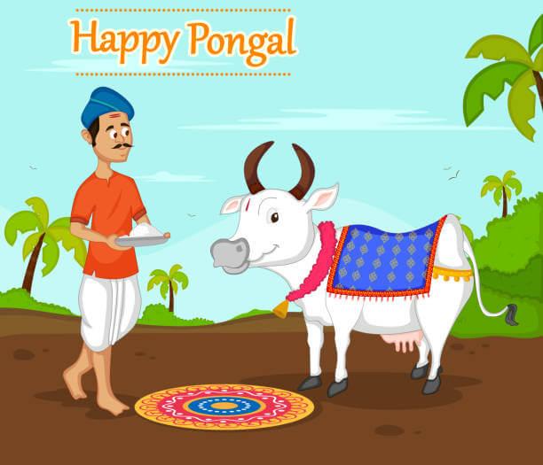 happy pongal wishes image
