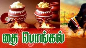 history-of-pongal-festival-tamil