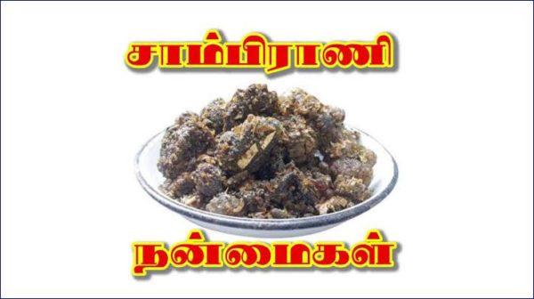 sambrani-poduvathu-eppadi-tamil
