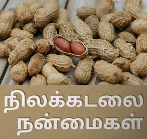 groundnut peanut benefits in tamil