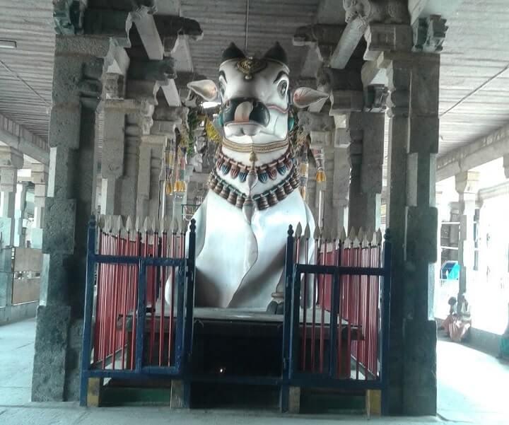 thiruvidaimaruthur mahalingeswarar temple nandi